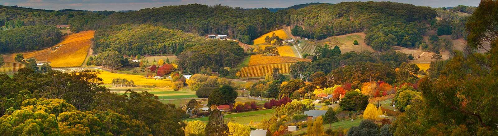 Adelaide-Hills